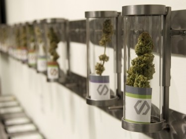 Displays at Shango Cannabis shop on the first day of legal recreational marijuana sales in Portland, Oregon, October 1, 2015