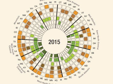 2015 policy wheel of state policies related to substance use in pregnancy, image by the RAND Corporation
