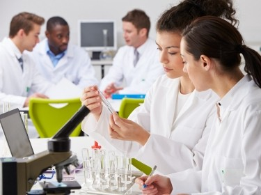 A group of technicians working in a laboratory