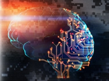 Human brain partially consists of circuit board, photo by Prostock-studio/AdobeStock