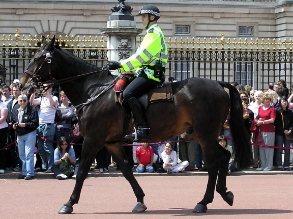 Mounted police outside Buckingham Palace, photo by Arpingstone/Wikimedia Commons